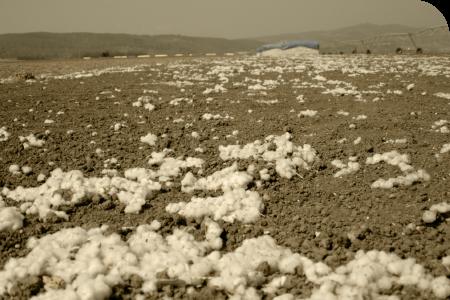 Muito mais resíduos vêm do transporte, que ficaram de algodão no chão.