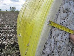 Acúmulo de algodão no interior das correias dos fardos