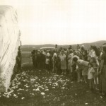 Moving Cotton Bale