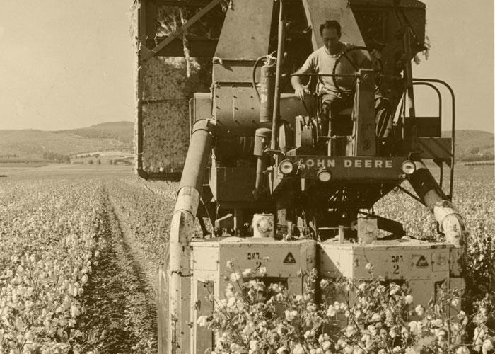 Old Cotton Picker